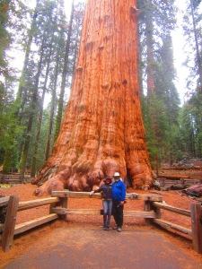 California Trip 158