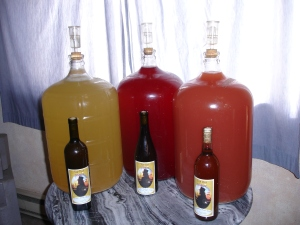 Wine aging in carboys